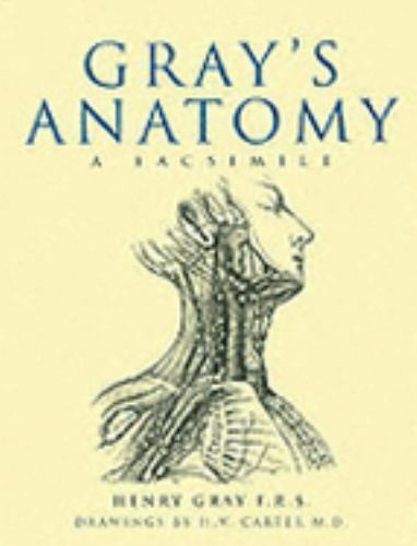 Gray\'s Anatomy : A Facsimile by Henry Gray (2006, Hardcover) | eBay