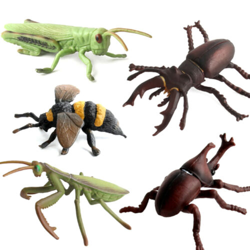 Simulation Animals Model Insect Stag Beetle Spider Honeybee Butterfly Model MW