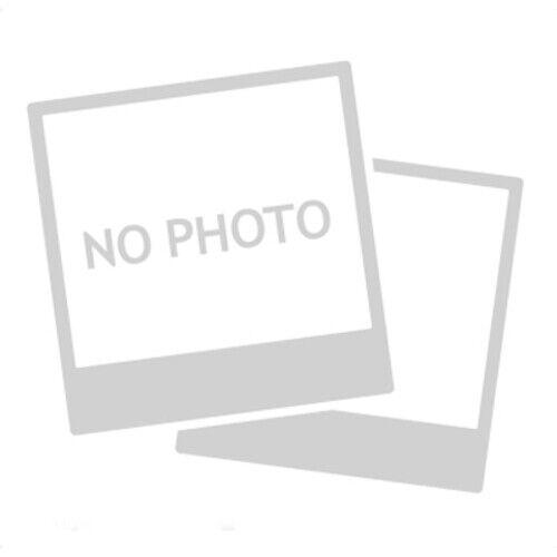 PFERD Fächerschleifscheibe X LOCK 125-M K40 SGP-CURVE