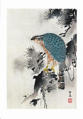 BIRD OF PREY SITTING ON A TREE REPRODUCTION WOODBLOCK PRINT