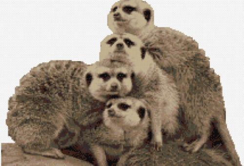 Meerkat Family Counted Cross Stitch Kit Wildlife//Animals