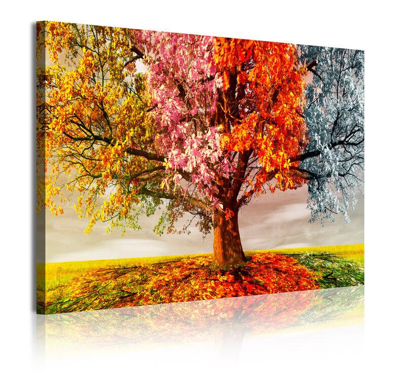 Ref 337   immagine immagini Tela Modern 4 stagioni ALBERO 120x80 cm
