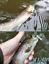 FIIISH Power Tail 64mm.Fishing Harte Köder,Fischen Köder Forelle Hecht Perch