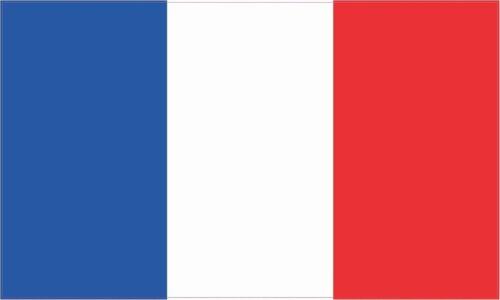 French France Flag Bumper Sticker Vinyl Car Window Decal BS-50054