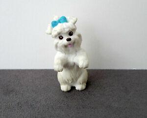 Maltaise Chien/west Terrier Oreilles Tombantes, Chien Blanc-afficher Le Titre D'origine