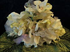Millinery Flower Ivory White Velvet Organza Bouquet Hat Wedding or Hair KM4 C