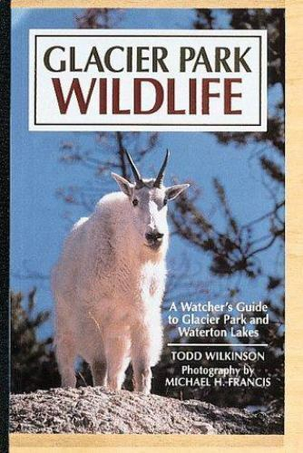 Glacier Park Wildlife : A Watcher's Guide by Todd Wilkinson