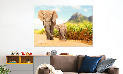 Elephants Wild animal  canvas wall art home Decor quality choose your size
