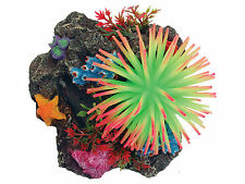 Ventosa montaje Reef Ornamento del acuario peces tanque decoración