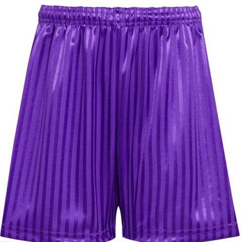 OFFICIAL SUPPLIER. David Luke Polyester Shadow Stripe Short Purple