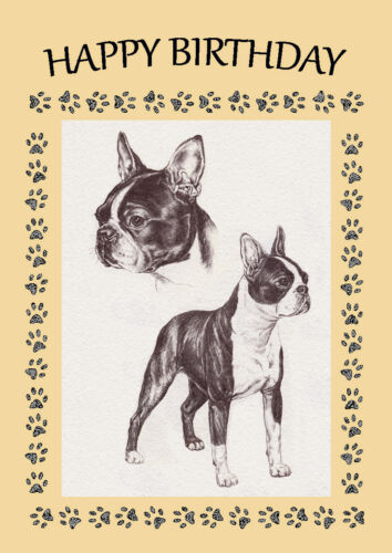 BOSTON TERRIER DOG BIRTHDAY GREETINGS NOTE CARD