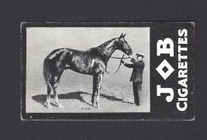 JOB-RACEHORSES-EBOR