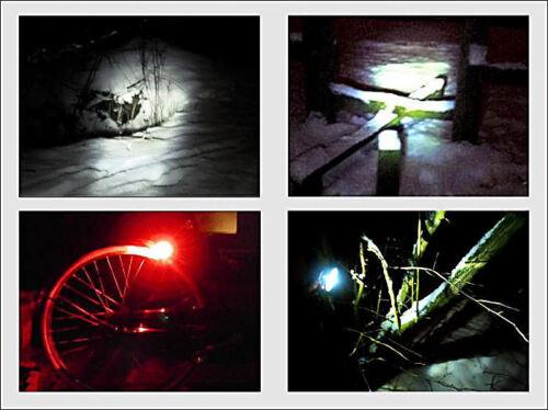 Lampadine LED Nicelite per Dinamo Dynohub Bicicletta Luci Regolatore Lampade