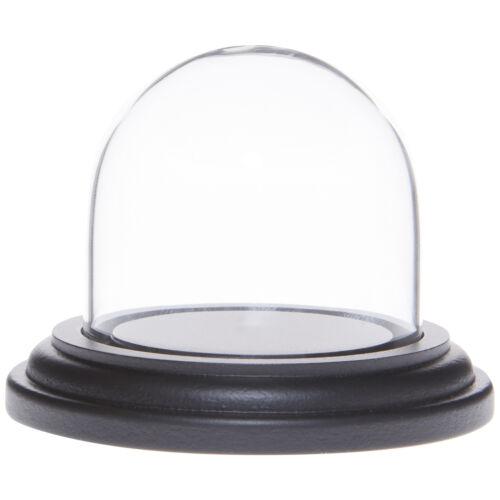 "Black Wood Base Plymor 1.875/"" x 1.875/"" Mini Glass Display Dome Cloche"