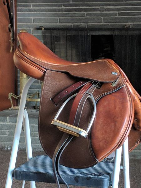 Bevals World Cup oro CC Saddle 17 Medium Tree Excellent Condition