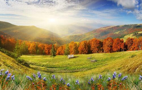Verre Splashback Cuisine /& Salle De Bain Panel toute taille automne paysage alpes 0324