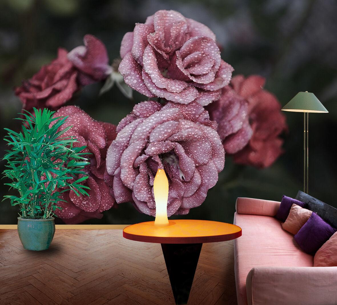 3D 3D 3D Rosa mit Tau 62 Fototapeten Wandbild Fototapete Bild Tapete Familie Kinder | Um Eine Hohe Bewunderung Gewinnen Und Ist Weit Verbreitet Trusted In-und   | Niedriger Preis  |  c32ee3