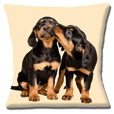 Dos Perros Cachorro Perro Salchicha Cubierta para Cojín 16x16 pulgadas 40cm Lindo Cachorros besos Crema