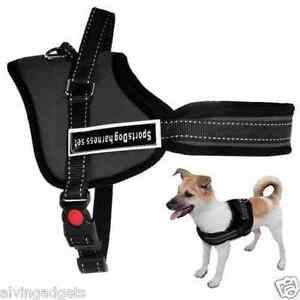 Sports-Dog-Harness-Vest-Handle-Soft-Padded-Adjustable-Pet-Vest-Small