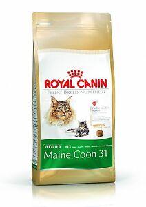 Royal Canin Félin Chat Nourriture Maine Coon 31 4kg Sec Mélange