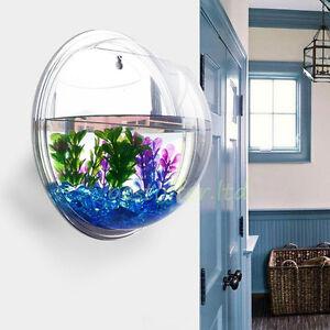 Image is loading Small-Wall-Mounted-Acrylic-Fish-Tank-Hanging-Bowl-