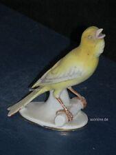+A015574_15 Goebel  Archivmuster Bunte Vogelwelt CV219 Kanarienvogel TMK1