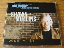 CD Single: Shawn Mullins : What Is Life