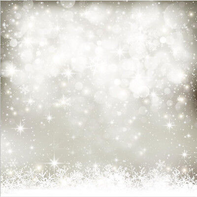 Raitron 5X7FT Vinyl Christmas Glitter Photography Backdrop Photo Background Studio Prop