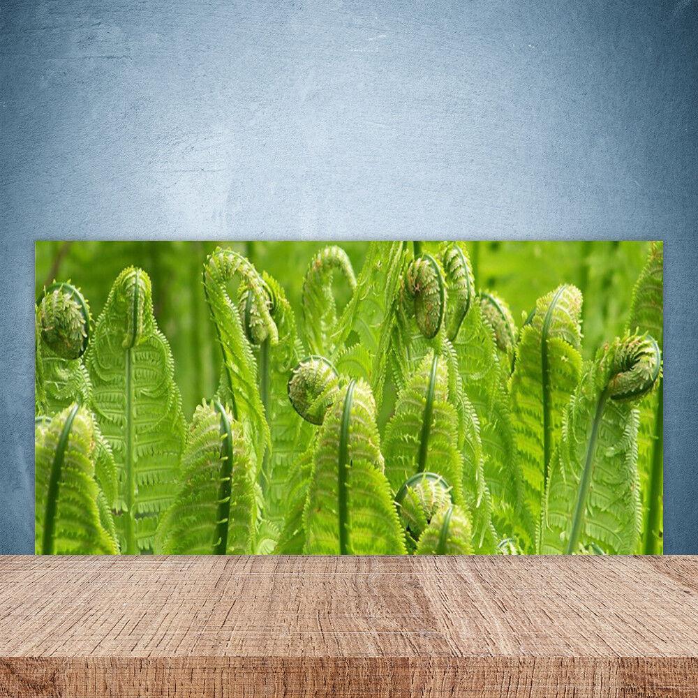 Crédence de cuisine en verre Panneau Paroi 100x50 Floral Plante