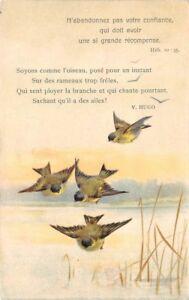 Uccellini-e-piccolo-testo-di-Victor-Hugo