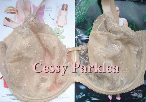 """G1-2 Euro """"GORG/"""" White Lace Embroidery Mesh Non-Padded Wire See-Through Bra"""