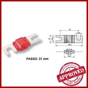 Fusibile-AFC-Lama-Amplificatore-Impianto-30-40-50-60-80-100-150-200-300-A