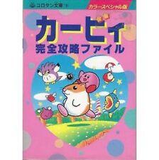 Kirby's Dream Land 2 & Kirby's Dream Course complete fan book / SNES GB