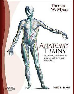 Thomas Myers Anatomy Trains Pdf