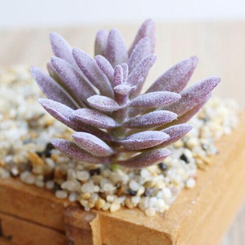 1PC Artificial Succulents Pick Faux Plant Bonsai Home Garden Decoration Unpotted