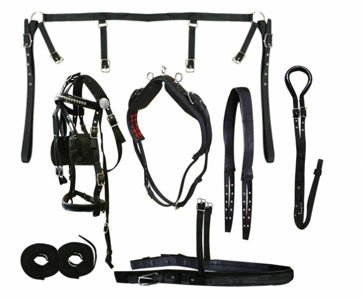 Petit cheval Cobb Taille Nylon Driving Harness