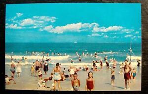 1950-039-s-POSTCARD-GREETINGS-FROM-JEKYLL-ISLAND-GEORGIA-BEACH-SCENE