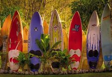"Fototapete Wandtapete Große wandkunst SURFEN "" SURFBRETTER WAND"""