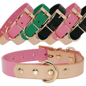 Luxury-Stitching-Leather-Small-Dog-Collars-Gold-D-ring-for-Pet-Puppy-Cat-Yorkie