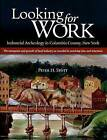 Looking for Work: Industrial Archeology in Columbia County, New York by Peter H. Stott (Hardback, 2007)