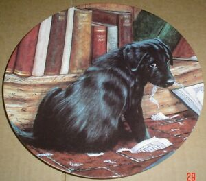 Lovely-Wedgwood-Danbury-Mint-Black-Labrador-Collectors-Plate-IT-WASNT-ME