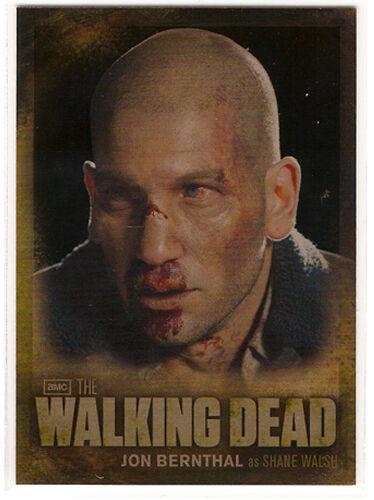 Walking Dead Season 2 ~ CHARACTER BIOS Insert Card CB03 Shane Walsh
