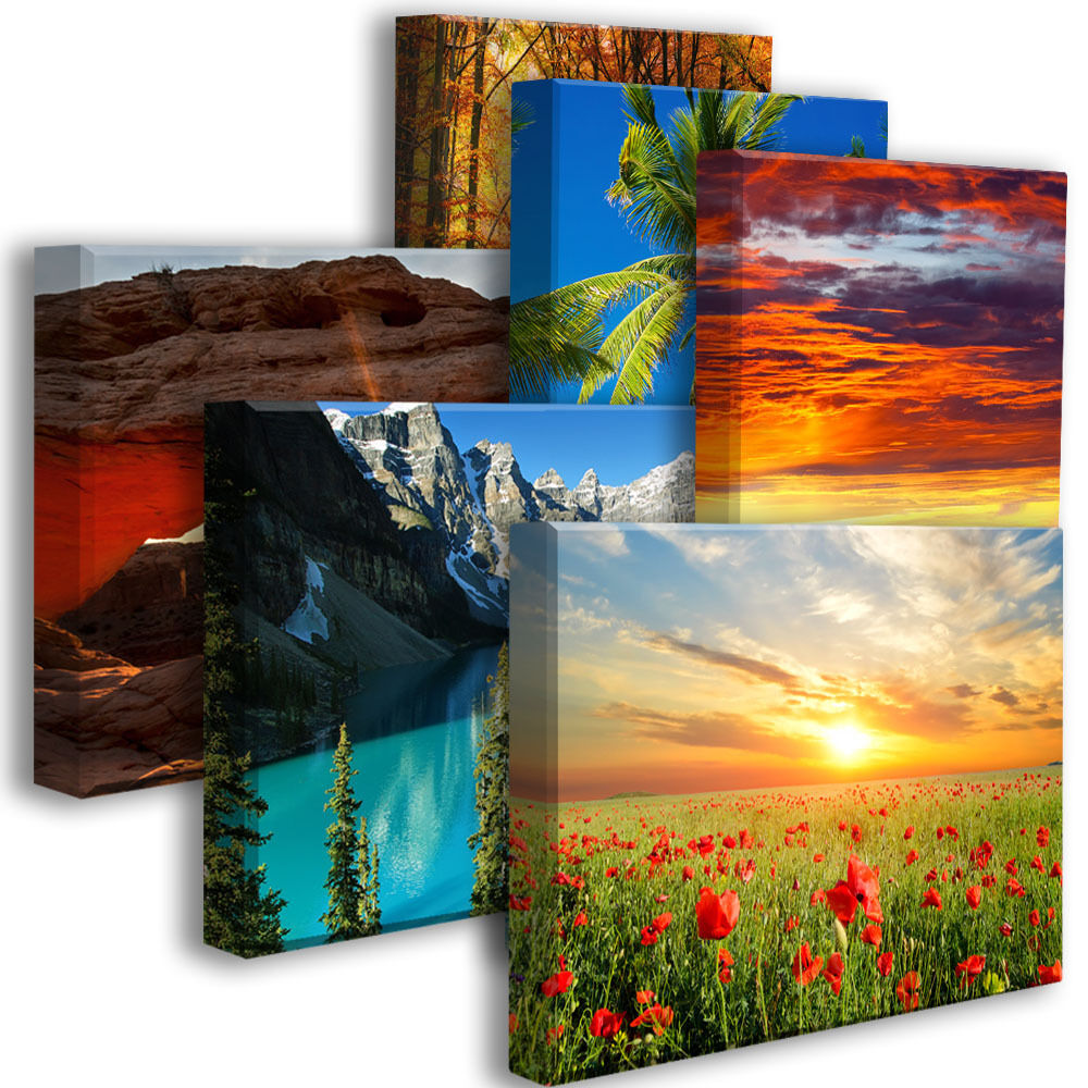 Acoustic Art Panel   Size 3'x2'x2 - Nature Art and Photos -1 Panel (6 available)