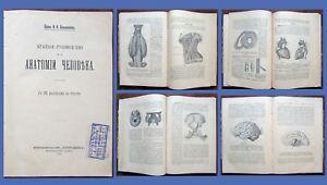 1912-RR-Imperial-Russian-Book-HUMAN-ANATOMY-by-Professor-Lysenkov-1st-Edit