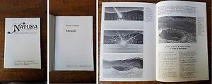 DE-MICHELE-V-Meteoriti-1986