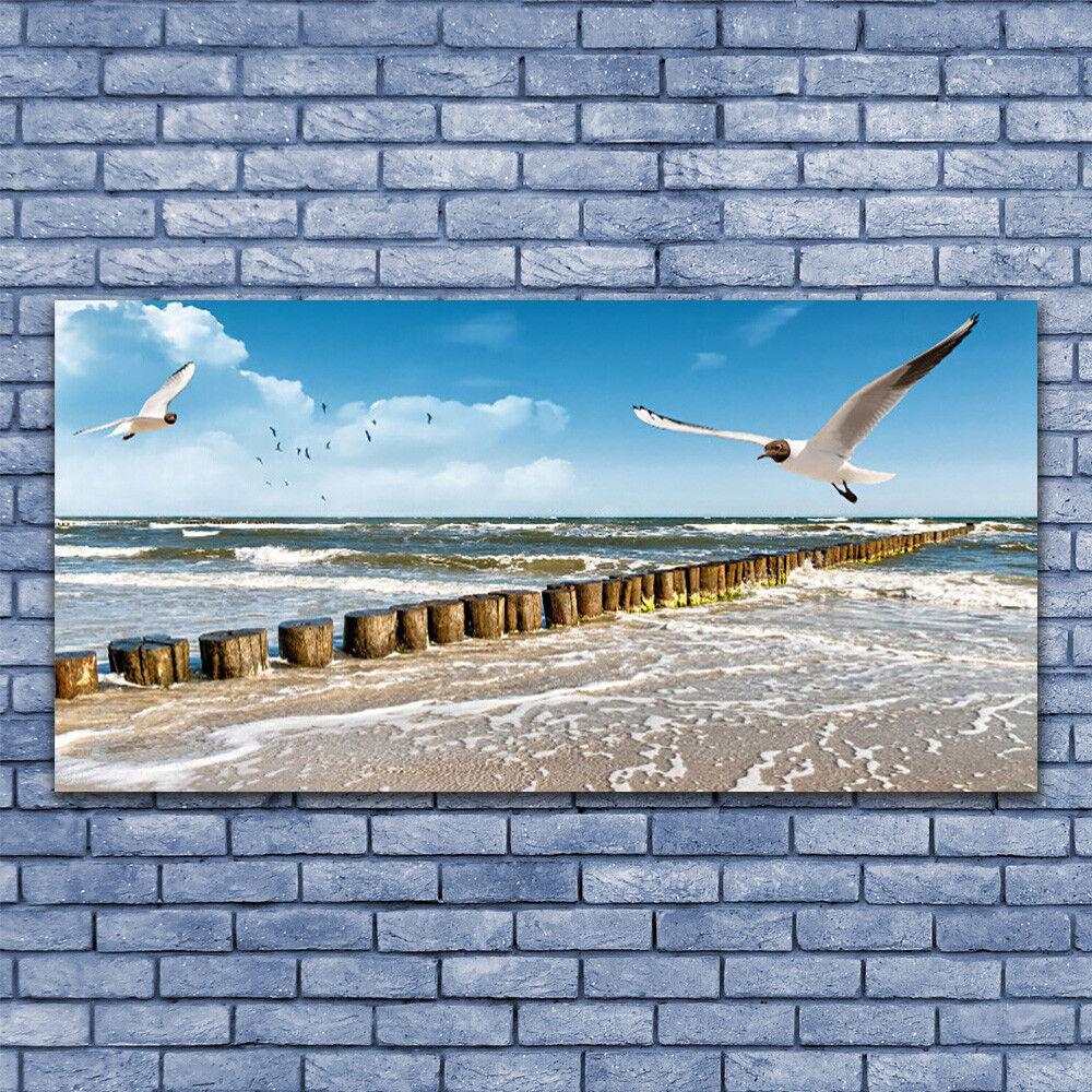 Leinwand-Bilder Wandbild Leinwandbild 140x70 Möwen Meer Landschaft