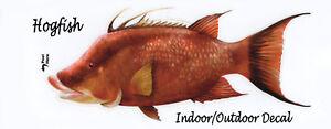 Catfish Channel Profile Decal Bumper Sticker Gifts Men Fishermen Fish Fishing