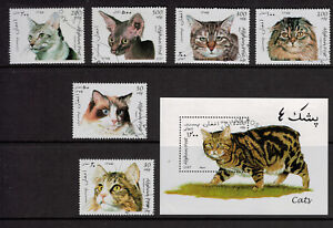 Afghanistan-Stamps-Taliban-Era-Cats-From-1997-With-Souvenir-Sheet-CTO
