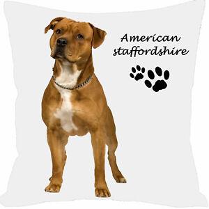 coussin-carre-satin-chien-american-staff-personnalise-prenom-au-choix-ref-187