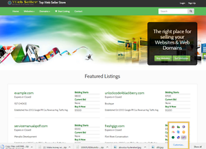 Sell Website Free Installation One Year Free Hosting Ebay